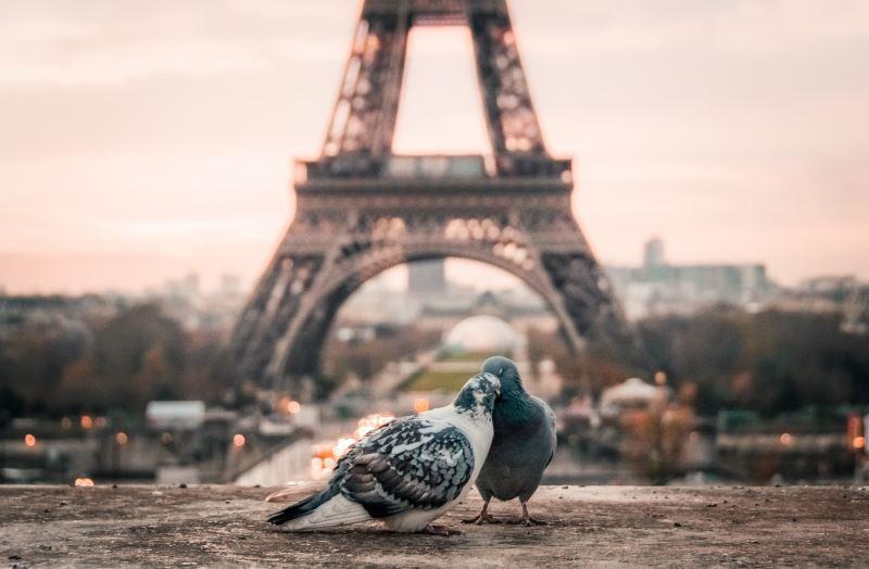 Список документов на визу во Францию