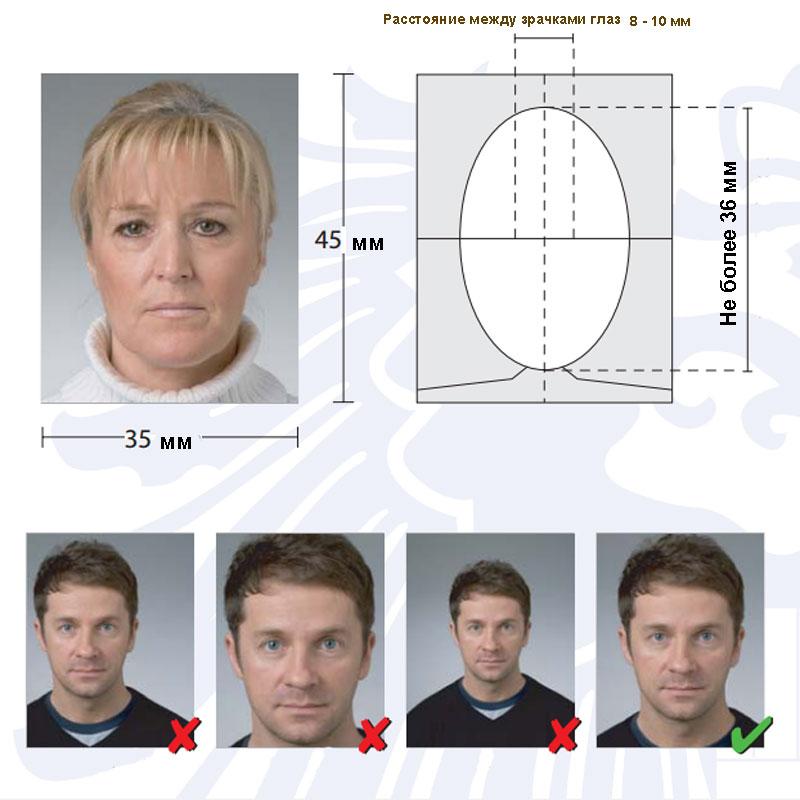фото на датскую визу требования запрос кавычки